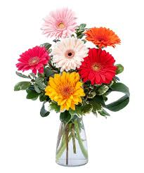 florist knoxville tn colorful knoxville tn florist flower delivery crouch florist