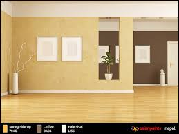asian paints colour shades interior walls my web value
