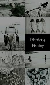 Best 25 Hunger Games Districts Ideas On Pinterest The Hunger