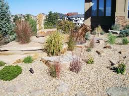Drought Tolerant Landscaping Ideas Garden Design Drought Resistant Front Yard Low Water Landscaping