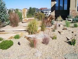 Drought Tolerant Backyard Ideas Garden Design Rock Garden Designs Low Water Yard Ideas Low Water