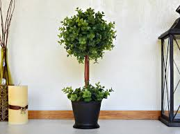 Artificial Boxwood Topiary Trees Uncategorized Artificial Topiary Trees In Best Uncategorized