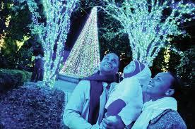 Botanical Gardens Lights Garden Lights At The Atlanta Botanical Garden Begin Nov 11