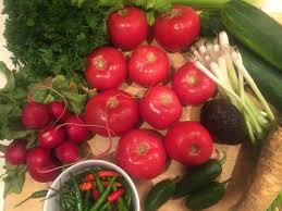 easy gazpacho recipevalerie hoff