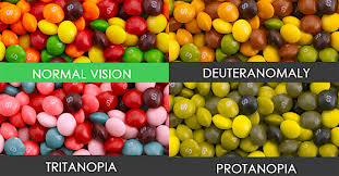 Human Color Blindness Photos 14 Common Human Genetic Mutations