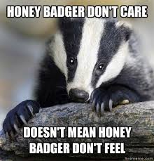 Honey Badger Memes - new honey badger meme livememe depressed badger kayak wallpaper