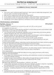 Summary Statement In Resume Summary Statement Resume Resume Name