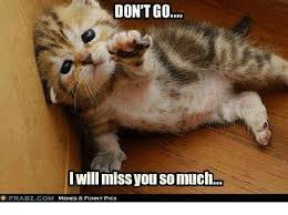 Funny I Miss You Meme - don t go i will miss you so much frabzcom memes funny pics
