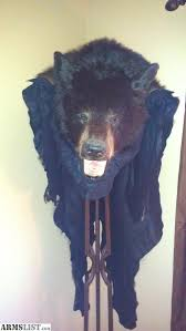 armslist for sale genuine canadian black bear fur rug 6 feet