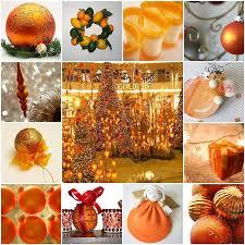 88 best orange images on oranges