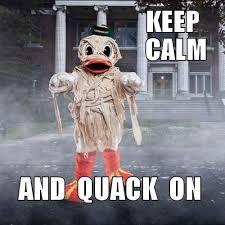 Oregon Ducks Meme - 108 best oregon ducks u of o images on pinterest seattle