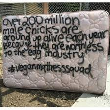 vegan mattress what is a vegan mattress sleeping organic