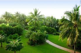whitsunday holiday hotel hamilton island australia booking com