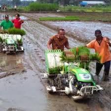 Garu Sisir alat pertanian modern beserta fungsinya agromaret