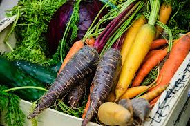 Winter Root Vegetables List - the list our 5 favourite purple vegetables