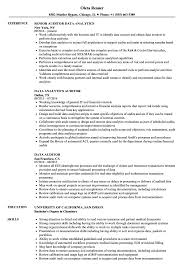 data analytics resume data auditor resume sles velvet