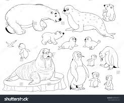zoo small set cute arctic animals stock illustration 488564317