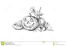 halloween symbol pumpkin still life stock photo image 27269110