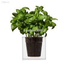 Planter Pot Best Wholesale Clear Tube Plant Pot Flower Pot Self Watering