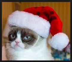 Grumpy Cat Christmas Memes - grumpy cat christmas blank template imgflip