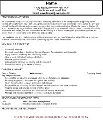 resume first job template first job summary resume 100 example it resume fashionable