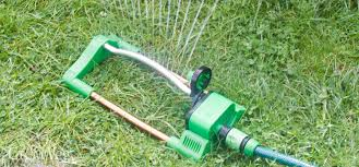 watering and irrigating your organic vegetable garden