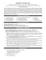 Best Resume Australia Sample Of Resume In Australia The Best Resume Template Resume
