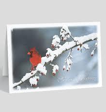 christmas cards sale christmas cards clearance sale