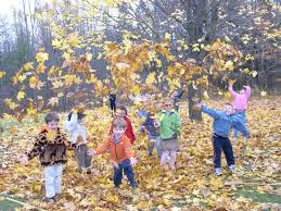 Wisconsin nature activities images 81 best fall preschool activities images fall fall jpg