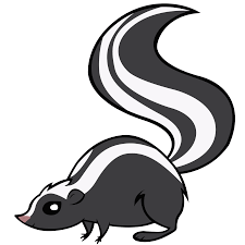 skunk png clipart clip art library