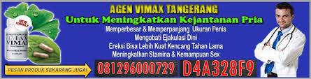 jual vimax asli denpasar 0813 9381 1601 antar gratis
