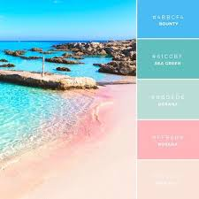 build your brand 20 unique and memorable color palettes to