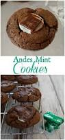 927 best delicious cookies images on pinterest cookie recipes