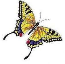 butterfly tattoos yellow butterfly designs pictures ideas