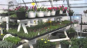 porter creek indoor garden centre suggests general organics canada