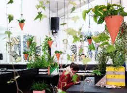 plants that grow in dark rooms darkroom presents greenhouse shoreditch design triangle