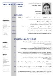 Resume English Example by How To Write A Curriculum Vitae In English Pdf Literary Analysis