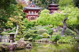 Golden Gate Botanical Garden 8 Must See Golden Gate Park Attractions Voyage