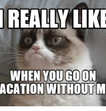 Go Die Meme - really like when you go on acation without m go die grumpy cat