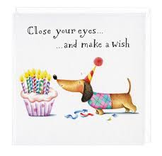 make a wish dachshund greeting card fritz make a