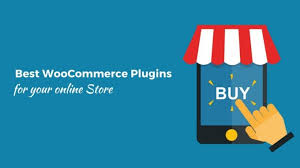best store plugin for 12 best woocommerce plugins to choose for your store wp villa