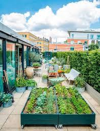 terrace gardening the top 10 best blogs on rooftop terrace gardening