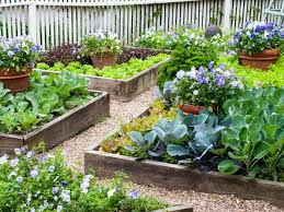 pictures of a garden should i plant my vegetable garden in raised beds hgtv