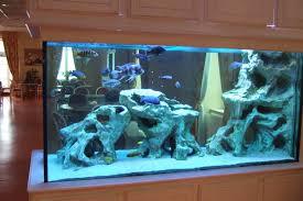 idee deco aquarium aquarium moderne