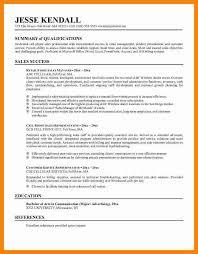 resume summary examples efficiencyexperts us