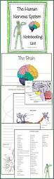89 best worksheets and quizzes images on pinterest worksheets