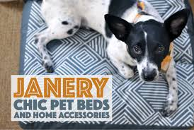janery chic pet beds and home accessories the broke dog