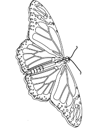 print monarch butterfly coloring pages 53 remodel free