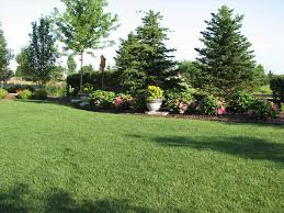 small yard privacy landscaping fleagorcom