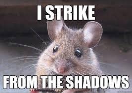 Rat Meme - lol meme twitch by ourempress on deviantart